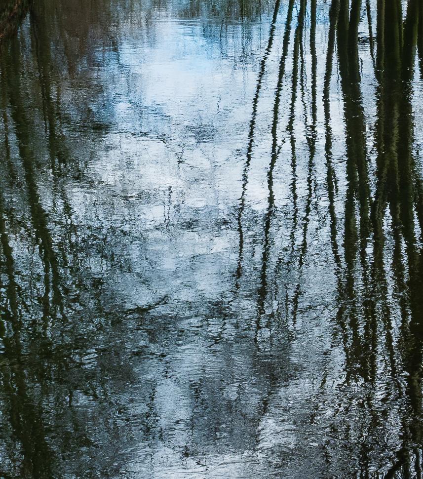 Sträucher spiegeln sich in bläulich reflektierendem Wasser