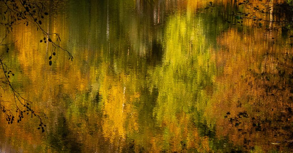 Herbstlaub spiegelt sich im Wasser