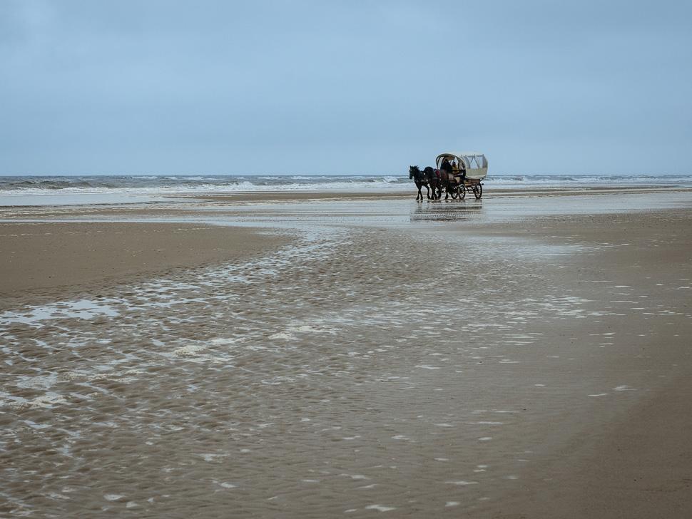 Pferdekutsche am Strand von Juist