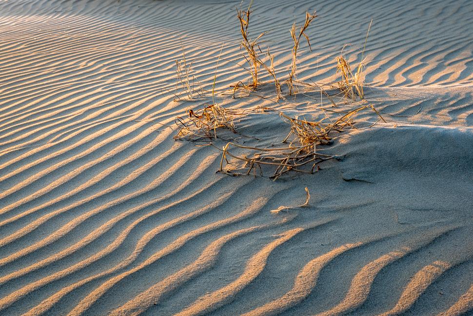 Strand von juist in der Morgensonne