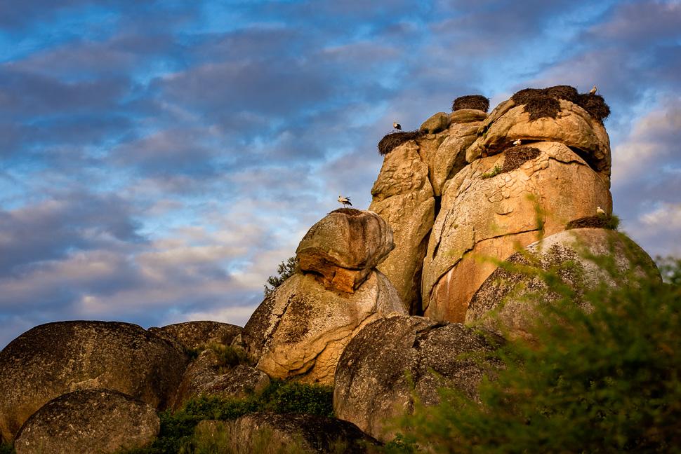 Granitfelsen von Los Barruecos mit Storchennestern
